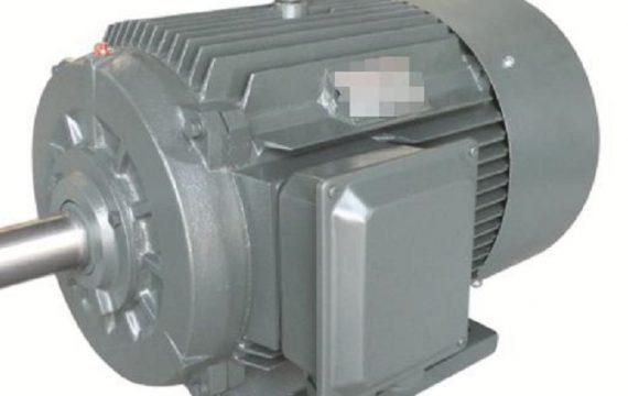Rare Earth Permanent Magnet Motors